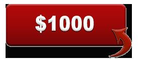 $1000 Button copy